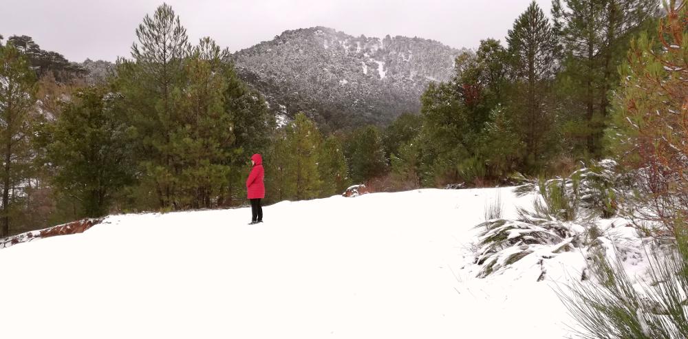 Nieve en Paterna
